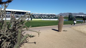 フェニックス・オープン(英語の名称はWaste Management Phoenix Open)の会場でも、この様に、各種のサボテンが目立った。因みにここはwaste bunkerだから、ソールしても構わない(Gary Cruzの写真)